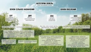 Что Можно Еще Сделать С Землей Сельхозназначения