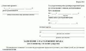 Заявление На Развод Беларусь Образец 2020 Через Суд