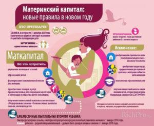 Когда Началась Программа Материнский Капитал В России