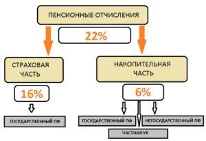 Как Распределяется 22 Пенсионных Отчислений