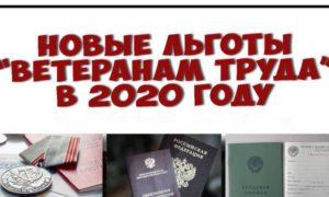 Ветеран Труда Рф Льготы В 2020 Году Воронеж