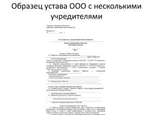 Устав Автономной Некоммерческой Организации 2020 С Одним Учредителем