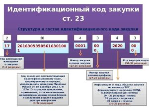 Что Такое Идентификационный Код Закупки По 223 Фз Пример
