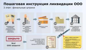 Ликвидация Жск Пошаговая Инструкция 2020