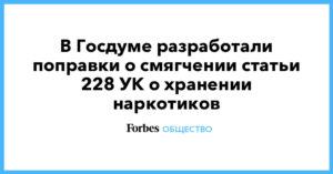 Госдума 228 статья поправки