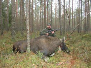 Штраф За Убитого Лося Без Лицензии В Закрытие Охоты 2020 Группой Лиц В