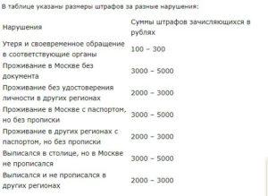 Сколько Платить За Утерянный Паспорт