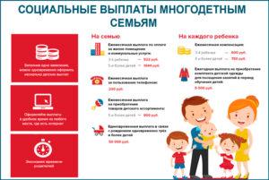 Льготы Для Многодетных В Школе И Саду В Белоруссии
