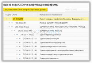Сервер Окопф Какая Амортизационная Группа Учета Основных Средств 2020