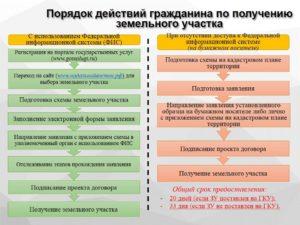 Покупка земельного участка у собственника порядок действий 2020