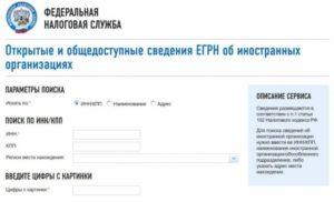 Найти кпп по инн организации на сайте налоговой