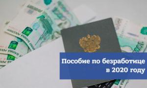 Выплаты по безработице в 2020 году в архангельской области